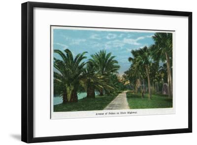 Daytona, Florida - Dixie Highway View of an Avenue of Palms, c.1914-Lantern Press-Framed Art Print