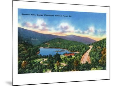 George Washington Nat'l Forest, Virginia - Aerial View of Sherando Lake, c.1956-Lantern Press-Mounted Art Print