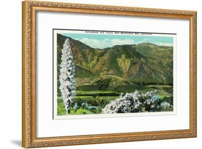 California - View of Flowering Yucca and the Arrowhead in the San Bernardino Mountains, c.1921-Lantern Press-Framed Art Print
