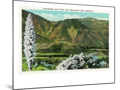 California - View of Flowering Yucca and the Arrowhead in the San Bernardino Mountains, c.1921-Lantern Press-Mounted Art Print