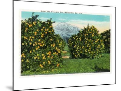 San Bernardino County, California - View of Snow-Capped Mountains and Orange Trees, c.1921-Lantern Press-Mounted Art Print