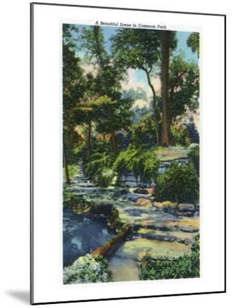 Waco, Texas - a Beautiful View in Cameron Park, c.1944-Lantern Press-Mounted Art Print