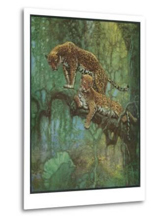 Nature Magazine - Two Leopards in a Tree, c.1932-Lantern Press-Metal Print