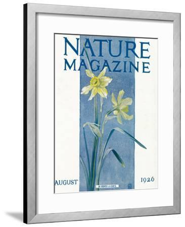 Nature Magazine - View of Blooming Daffodils, c.1926-Lantern Press-Framed Art Print