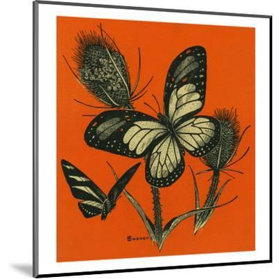 Nature Magazine - View of Butterflies on Thistles, c.1949-Lantern Press-Mounted Art Print