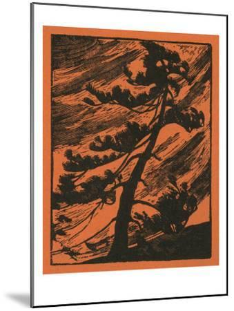 Nature Magazine - View of a Tree Being Thrashed in a Wind Storm, c.1940-Lantern Press-Mounted Art Print