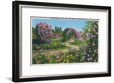 Boston, Massachusetts - Back Bay Fens and Rose Gardens View, c.1939-Lantern Press-Framed Art Print