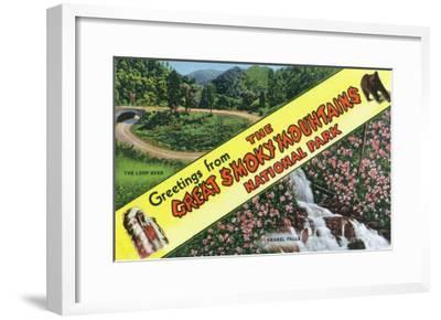 Great Smoky Mts. Nat'l Park, Tennessee - View of Loop-Over, Laurel Falls, Greetings from, c.1944-Lantern Press-Framed Art Print