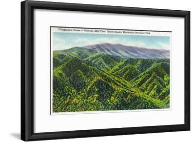 Great Smoky Mts. Nat'l Park, Tn - View of Clingman's Dome, c.1936-Lantern Press-Framed Art Print