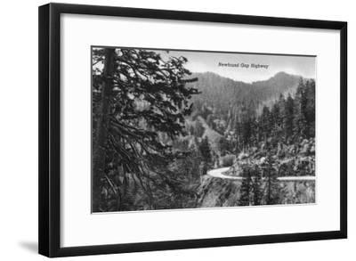 Great Smoky Mts. Nat'l Park, Tn - Newfound Gap Highway Scene (B/W), c.1940-Lantern Press-Framed Art Print