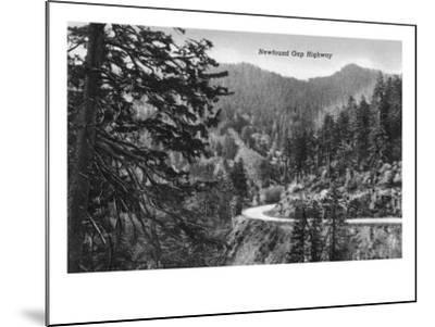 Great Smoky Mts. Nat'l Park, Tn - Newfound Gap Highway Scene (B/W), c.1940-Lantern Press-Mounted Art Print