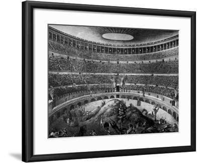 Gladiators Fighting Against Various Animals in Colosseum--Framed Photographic Print