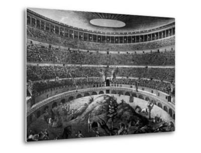 Gladiators Fighting Against Various Animals in Colosseum--Metal Print