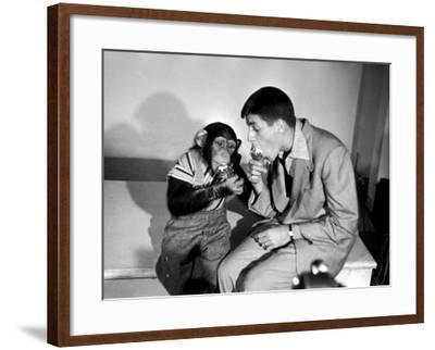 Entertainer Jerry Lewis with a Chimpanzee-Peter Stackpole-Framed Premium Photographic Print