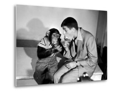 Entertainer Jerry Lewis with a Chimpanzee-Peter Stackpole-Metal Print