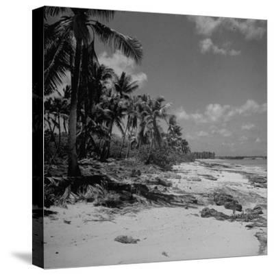 Shoreline at Bikini Atoll on Day of Atomic Bomb Test-Bob Landry-Stretched Canvas Print