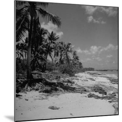 Shoreline at Bikini Atoll on Day of Atomic Bomb Test-Bob Landry-Mounted Photographic Print