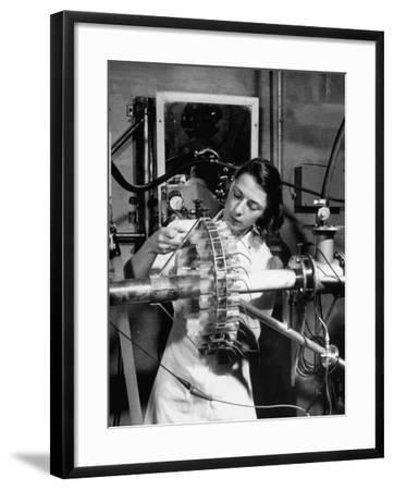 Dr. Liane Russell Studying Effects of Radiation on Mouse Genetics at Oak Ridge National Laboratory--Framed Photographic Print