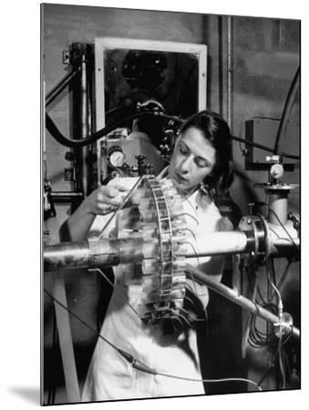 Dr. Liane Russell Studying Effects of Radiation on Mouse Genetics at Oak Ridge National Laboratory--Mounted Photographic Print