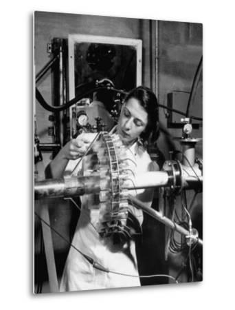Dr. Liane Russell Studying Effects of Radiation on Mouse Genetics at Oak Ridge National Laboratory--Metal Print