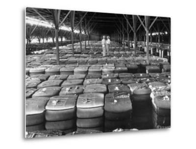 Archie Underwood and Another Man Standing on Top of Great Bales of Cotton in One of His Warehouses-Alfred Eisenstaedt-Metal Print