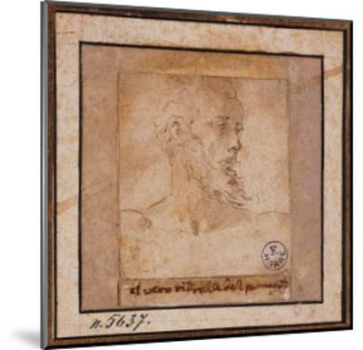Study Sketch for a Bearded Male Head-Pieter Bruegel the Elder-Mounted Giclee Print