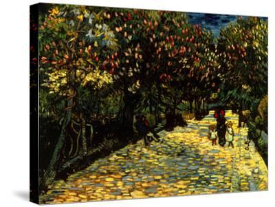 Street with Chestnuts Blossoming--Stretched Canvas Print