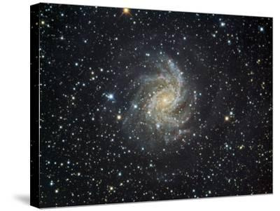 Ngc 6946 Spiral Galaxy in Cepheus-Robert Gendler-Stretched Canvas Print