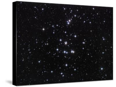 M44, the Beehive Cluster in Cancer-Robert Gendler-Stretched Canvas Print