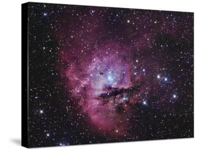 Ngc 281, Emission Nebula and Open Cluster in Cassiopeia-Robert Gendler-Stretched Canvas Print