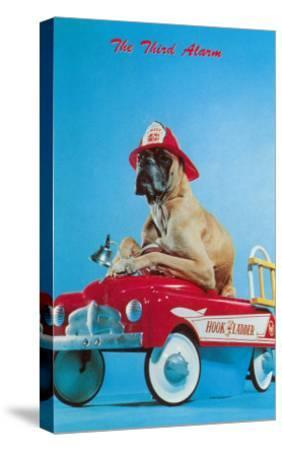 Great Dane in Toy Fire Wagon, Third Alarm--Stretched Canvas Print