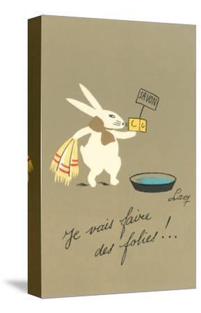 Rabbit Preparing to Bathe--Stretched Canvas Print