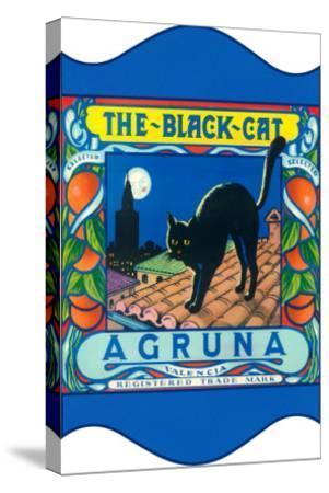 Black Cat Oranges--Stretched Canvas Print