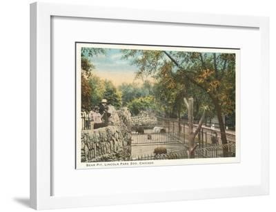 Bear Pit, Lincoln Park Zoo, Chicago, Illinois--Framed Art Print