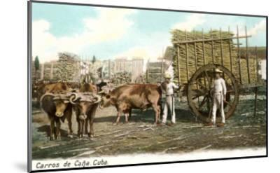 Sugar Cane Cart, Cuba--Mounted Art Print