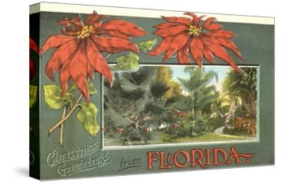 Christmas Greetings from Florida--Stretched Canvas Print