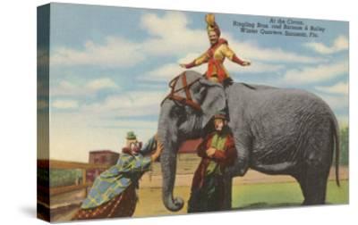 Circus Elephant and Clowns, Sarasota, Florida--Stretched Canvas Print