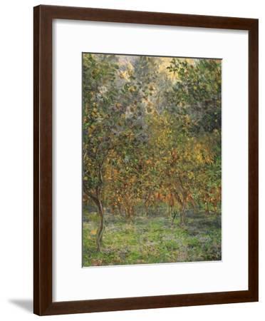 Lemon Trees, 1884-Claude Monet-Framed Giclee Print