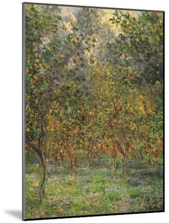 Lemon Trees, 1884-Claude Monet-Mounted Giclee Print
