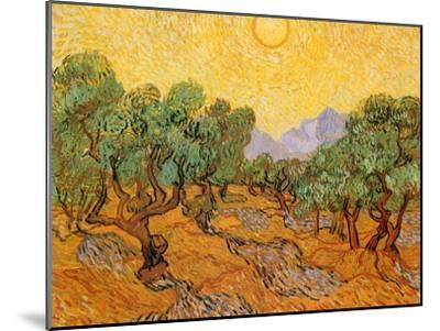 Sun over Olive Grove, 1889-Vincent van Gogh-Mounted Giclee Print