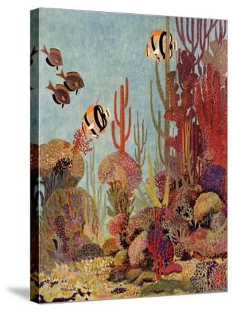 Coral and Fish, 1933--Stretched Canvas Print