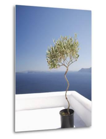 Santorini, Cyclades, Greek Islands, Greece, Europe-Angelo Cavalli-Metal Print