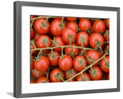 Vine Tomatoes in Street Market, Ortygia, Syracuse, Sicily, Italy, Europe-Martin Child-Framed Photographic Print