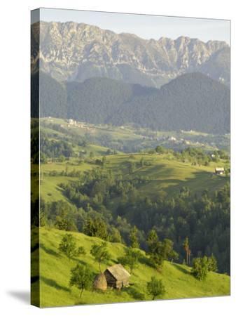 Transylvanian Alps, Near Fundata, Transylvania, Romania, Europe-Gary Cook-Stretched Canvas Print
