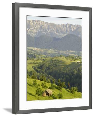 Transylvanian Alps, Near Fundata, Transylvania, Romania, Europe-Gary Cook-Framed Photographic Print