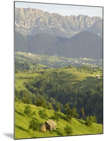 Transylvanian Alps, Near Fundata, Transylvania, Romania, Europe-Gary Cook-Mounted Photographic Print