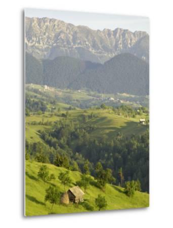 Transylvanian Alps, Near Fundata, Transylvania, Romania, Europe-Gary Cook-Metal Print