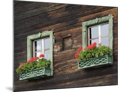 Typical Window Box, Otztal Valley, Tyrol, Austria, Europe-Gary Cook-Mounted Photographic Print