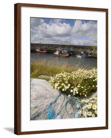 Helvick Head Pier, County Waterford, Munster, Republic of Ireland, Europe-Richard Cummins-Framed Photographic Print
