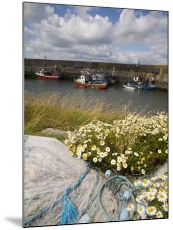 Helvick Head Pier, County Waterford, Munster, Republic of Ireland, Europe-Richard Cummins-Mounted Photographic Print